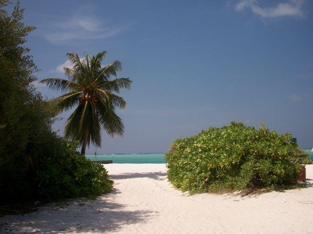Reves De Voyage Agence De Voyages Rennes Maldives (15) 175